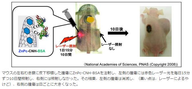 がんの光線力学療法に「カーボンナノホーン」応用|産業技術総合研究所と藤田保健衛生大など