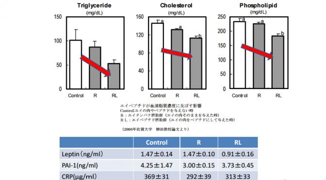 ナルトビエイにメタボ改善効果|脂肪肝やコレステロール濃度を改善する作用|佐賀大