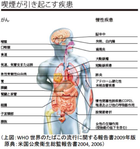 喫煙が引き起こす疾患|WHO 世界のたばこの流行に関する報告書2009年版