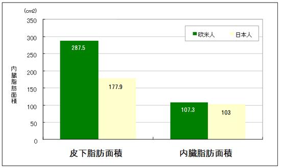 日本人は欧米人より内臓脂肪がたまりやすい?
