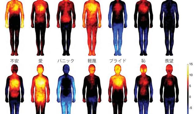 Bodily maps of emotions 幸福・愛・不安・怒りの感情は体のどこで感じるか?
