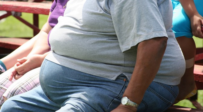 太っていくにつれて中性脂肪が高くなるメカニズムを解明|東北大