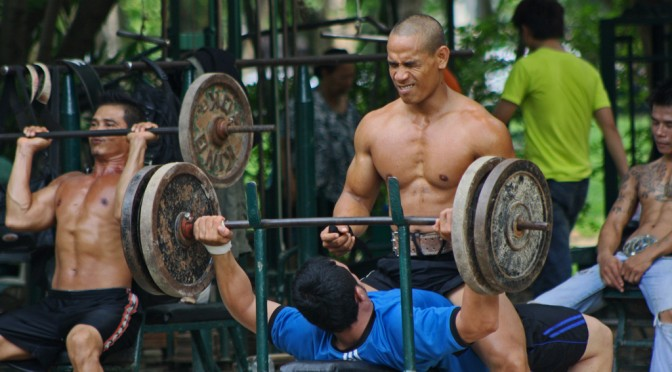 プロテインを摂れば筋肉ができるの?|プロテインの効果的な選び方・注意点