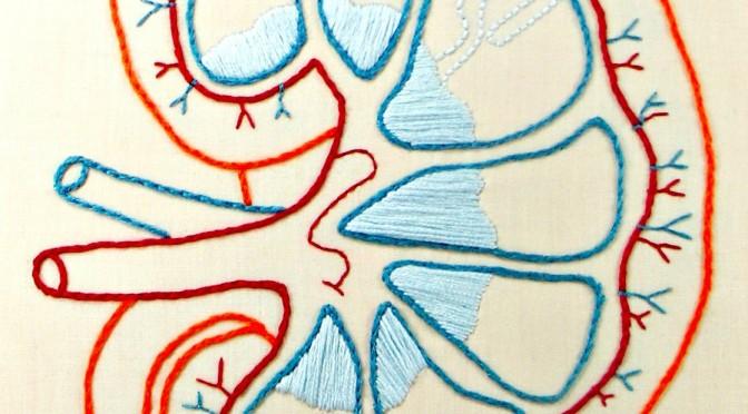 【#主治医が見つかる診療所】新国民病!慢性腎臓病|高血圧が慢性腎臓病の引き金になる!