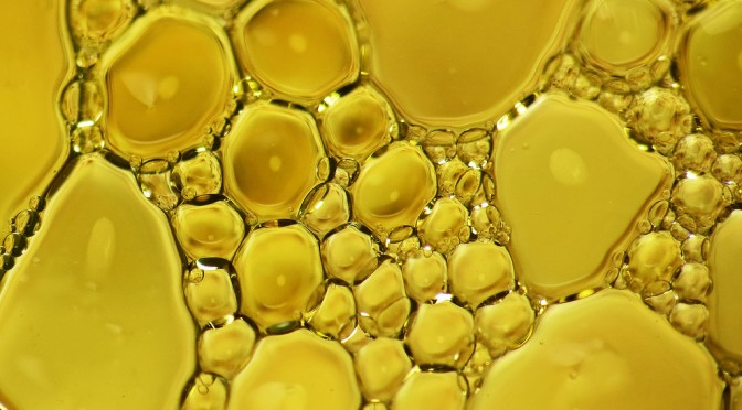 冷え性にはエゴマ油が効果的|えごま油は手足の末梢血管を拡張させてくれる|駆け込みドクター
