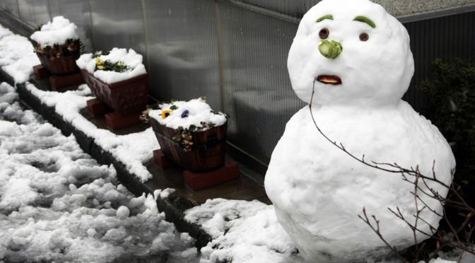 背中の筋肉を鍛えたいなら雪だるまを作ろう!