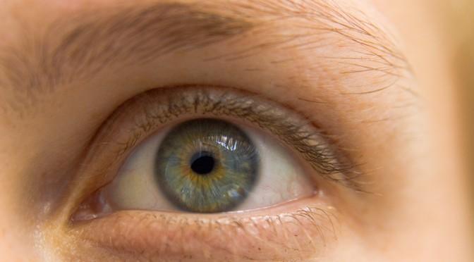 ES細胞から網膜に近い組織を効率的に作ることに成功 「網膜色素変性症」などの再生医療に役立つ可能性|理研・住友化学
