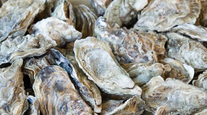 牡蠣に含まれるアミノ酸には、肝障害を抑制するだけでなく、疲労回復効果もある!?