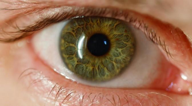 目の不調(ドライアイ・目の充血・白内障・飛蚊症・加齢黄斑変性・調節けいれん・まばたき不全・眼位異常)|駆け込みドクター!