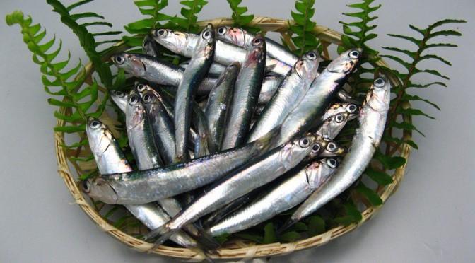 オメガ3を含む青魚を食べると皮膚がんの予防につながる!?