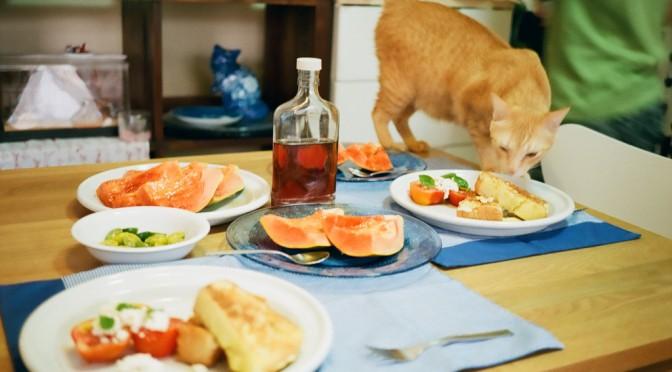 朝食をたくさん食べると、糖尿病や高血圧の予防になる!?|テル・アビブ大学