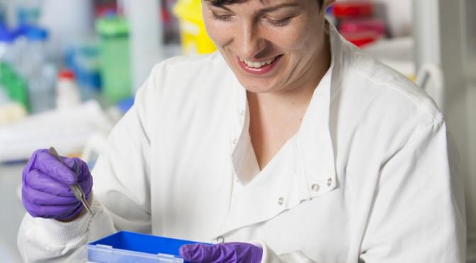 腎臓がんの発生や増殖の仕組みを解明|横浜市立大学など