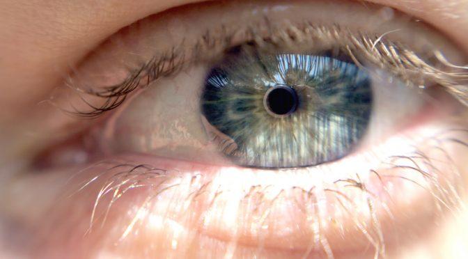タウリンとビタミンAが角膜上皮幹細胞を酸化ストレスから保護するメカニズムを発見|ロート製薬