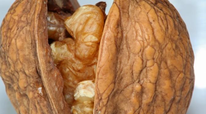 くるみを一日に75g食べると精子の質が向上するという研究結果