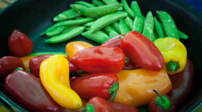 ミス・ユニバース・ジャパン ファイナリストのスタイルキープのための食事・食生活