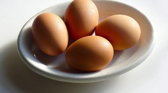 熊本で見つけた!オメガ3卵(オメガ3ナチュラルたまご)とは?|緒方エッグファーム(熊本県合志市)
