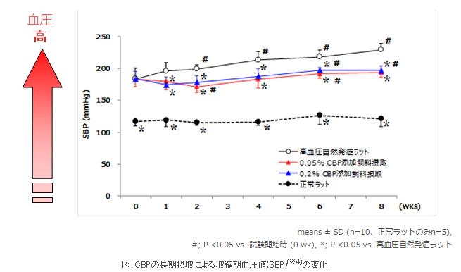 「カカオプロシアニジン」を含む抽出物 (CBP)の長期摂取による収縮期血圧値の変化