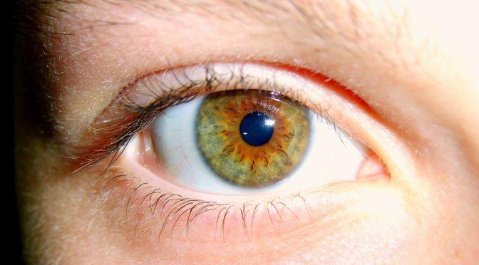 滲出性加齢黄斑変性(AMD)の原因遺伝子特定 九州大