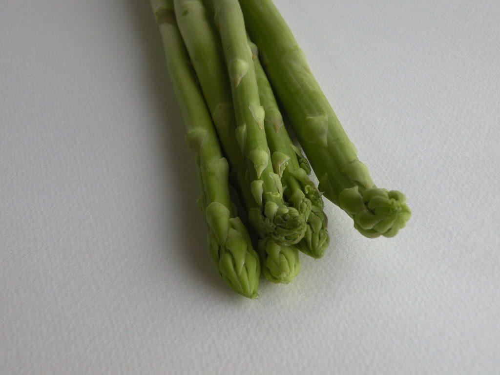 アスパラガス(Asparagus)
