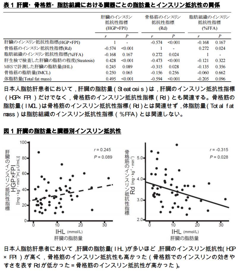 肝臓・骨格筋・脂肪組織における臓器ごとの脂肪量とインスリン抵抗性の関係