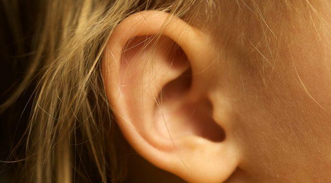 めまいや耳鳴り、難聴などを起こす「メニエール病」の原因を解明|大阪市大グループ