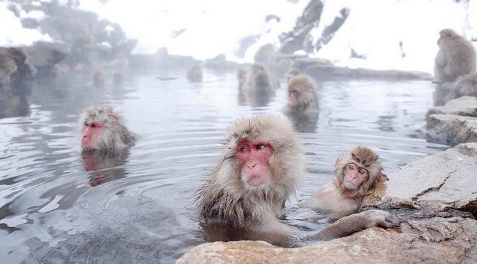 冷え症・ストレッチ入浴法|ストレスで冷えがひどくなる「心の冷え症」チェック(20問)|#たけしの家庭の医学