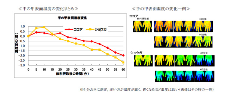 手の甲表面温度の変化