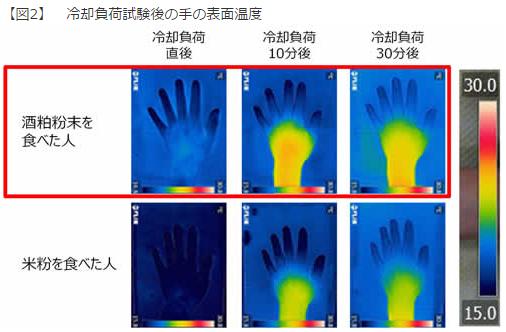 冷却負荷試験後の手の表面温度|酒粕を食べることで「体は温まる」か?