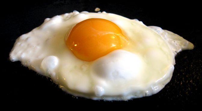 すぐできる体質改善|鶏肉・鶏卵が脳の老化を抑える!?|#ホンマでっかTV