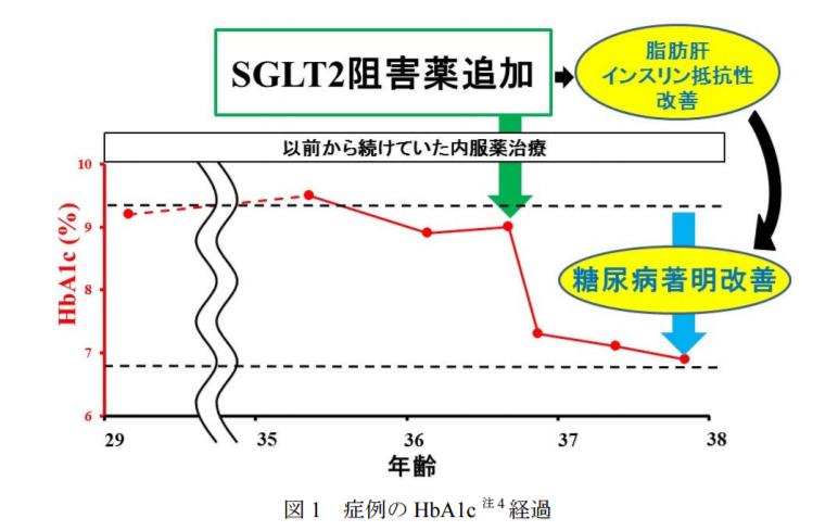 SGLT2阻害薬追加→HbA1cの改善→脂肪肝・インスリン抵抗性改善→糖尿病改善