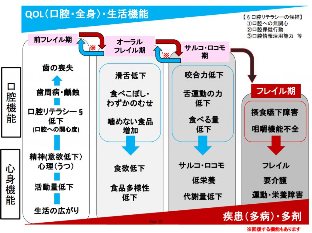 オーラルフレイル仮説(前フレイル期・オーラルフレイル期・サルコ・ロコモ期・フレイル期)