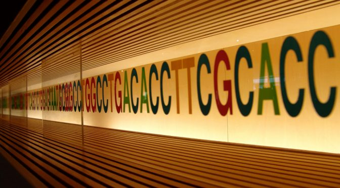 DNA解析サービスに各社参入|DeNAがDNA解析へ、東大医科研と組みヘルスケア分野に参入