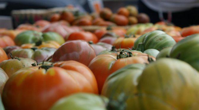 9カ月ベジタリアン(菜食生活)を続けると、体にどんな異変が起こるのか?