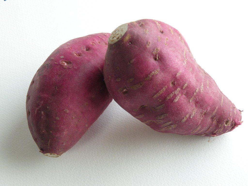サツマイモ(sweet potato)