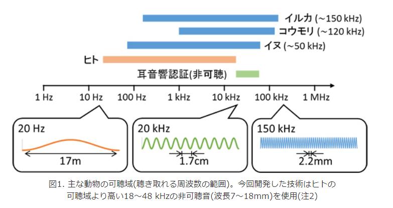 主な動物の可聴域(聞き取れる周波数の範囲)。今回開発した技術はヒトの可聴域より高い18-48kHzの非可聴音(波長7-18mm)を使用