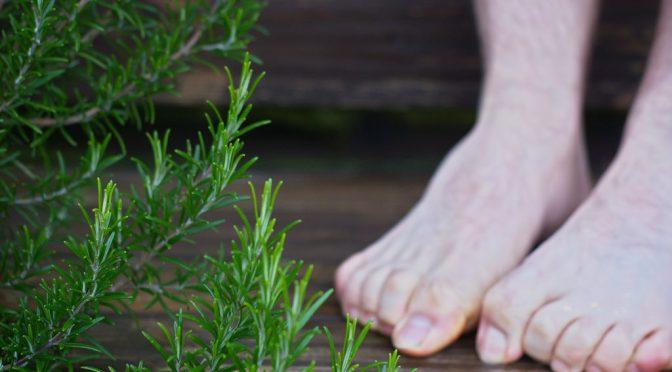 足の冷え解消のツボ:築賓(ちくひん)の位置(ふくらはぎ)・押し方|たけしの本当は怖い家庭の医学