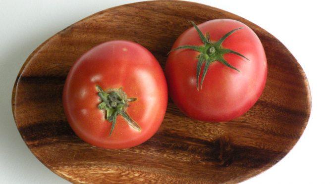 トマト(tomato)