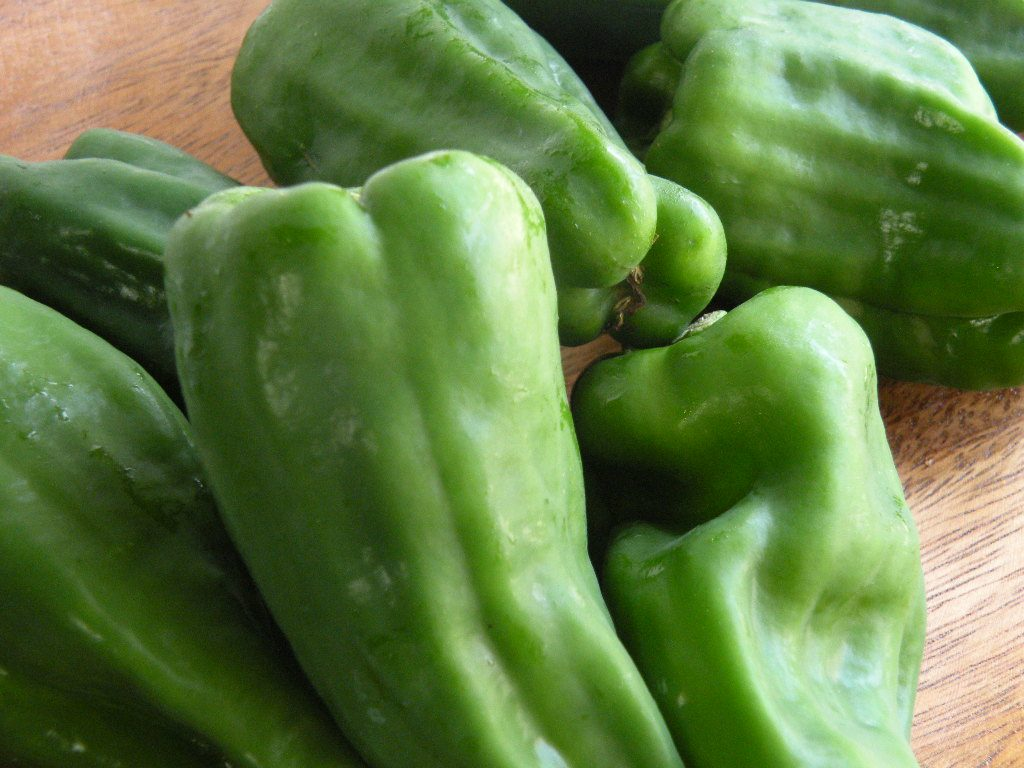 ピーマン(green pepper, bell pepper)