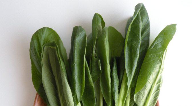 野菜(ビタミン・食物繊維・葉酸・ポリフェノールなど)を摂る|おすすめの健康的ライフスタイル10箇条