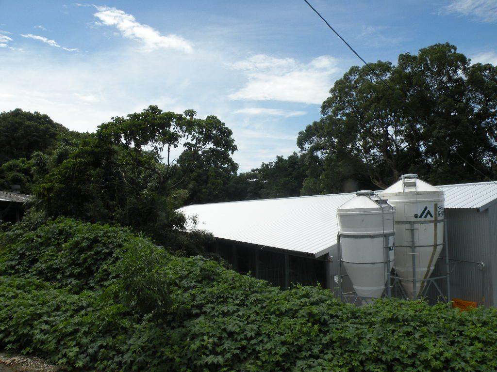 土井農場さんの生産農場(豚舎)を上から見ると木々に囲まれていることが分かりますよね。