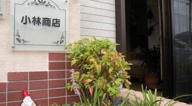小林商店(長崎県諫早市西小路町)