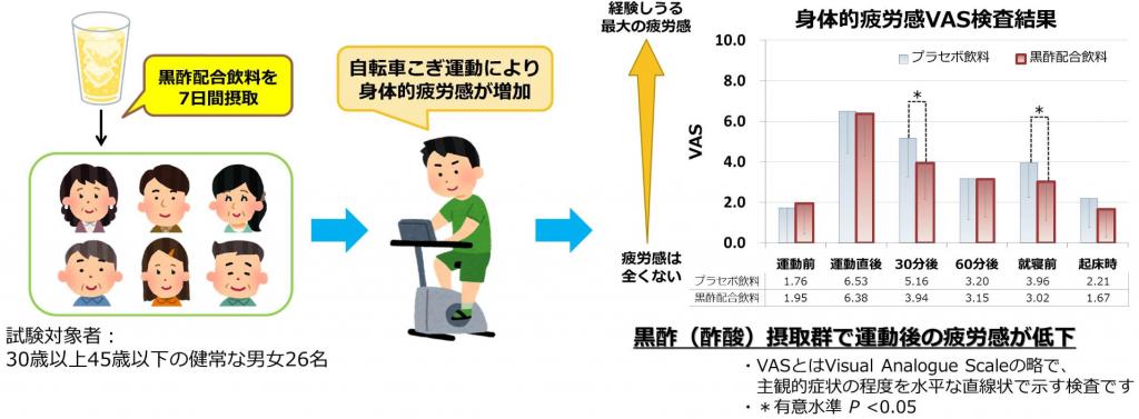 黒酢飲料の継続摂取が運動後の疲労感を軽減することを確認|伊藤園
