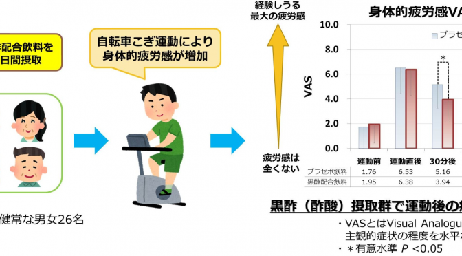 エクササイズ後の疲れを軽くする方法|黒酢飲料の継続摂取によって運動後の疲労感が軽減することを確認|伊藤園