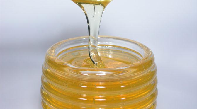 【林修の今でしょ講座】ハチミツの健康効果|インフルエンザウイルスの増殖を抑える働き|マヌカハニーの抗菌効果は普通の蜂蜜の8倍!|動脈硬化対策|骨を強くする