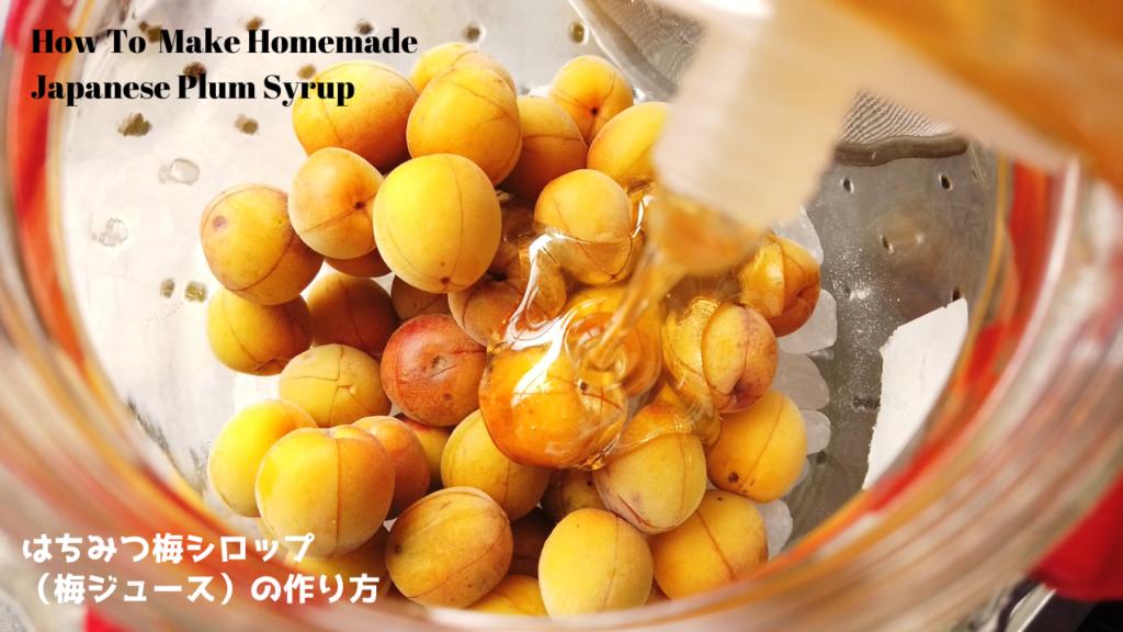 はちみつ梅シロップ(梅ジュース)の作り方・レシピ【ばあちゃんの料理教室】(2020年5月25日)/How To Make Homemade Japanese Plum Syrup