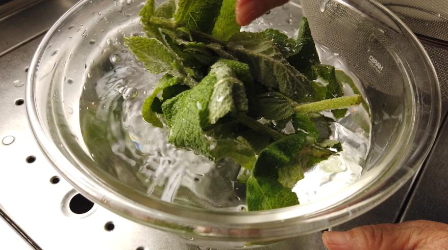 【アップルミントティーレシピ】1.摘んできたアップルミントを洗い、水を切ります。