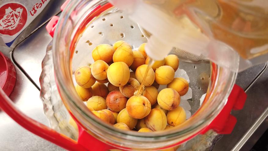 【梅シロップ(梅ジュース)の作り方】8.保存容器に梅と蜂蜜と氷砂糖を交互に入れます。