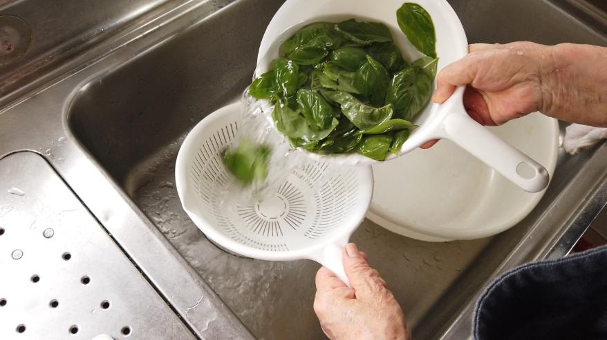 【バジルソースパスタレシピ】1.下ごしらえ。バジルを洗い、よく水気をきります。にんにくを粗みじん切りにします。