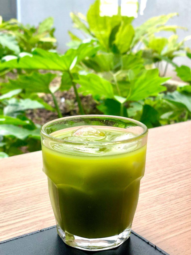 波瑠さんは美容を意識して青汁や飲むヨーグルトを飲んでいる【笑ってコラえて】【ハシゴの旅】